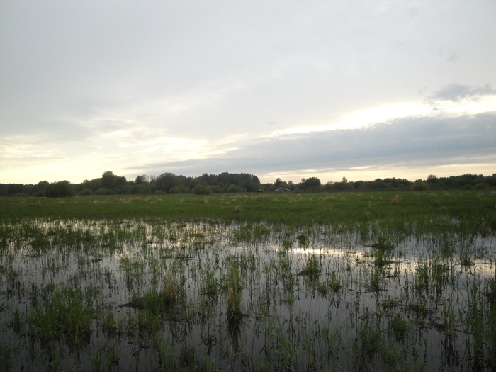 В Кашламе можно садить рис.