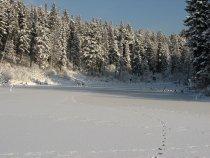 Морозный денёк :)