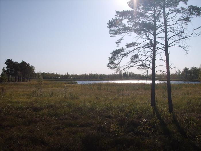 озеро в ряму