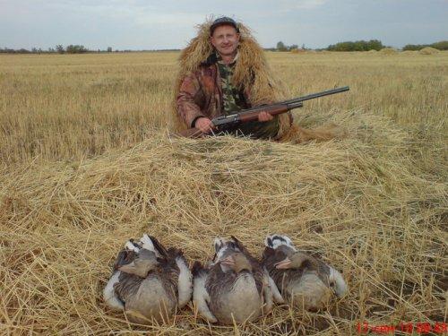 результат классической охоты на гуся