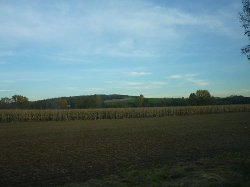 Полоска в зиму...,охотхозяйство в Европе.