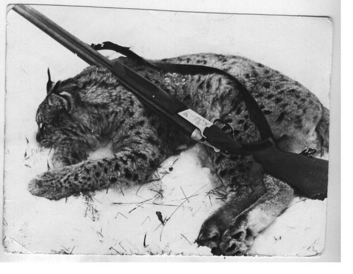 Охотничий натюрморт 70-х