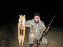 Взят исключительно для сохранения популяции зайца))