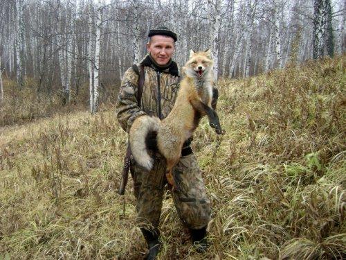 Первая добытая лиса!!!