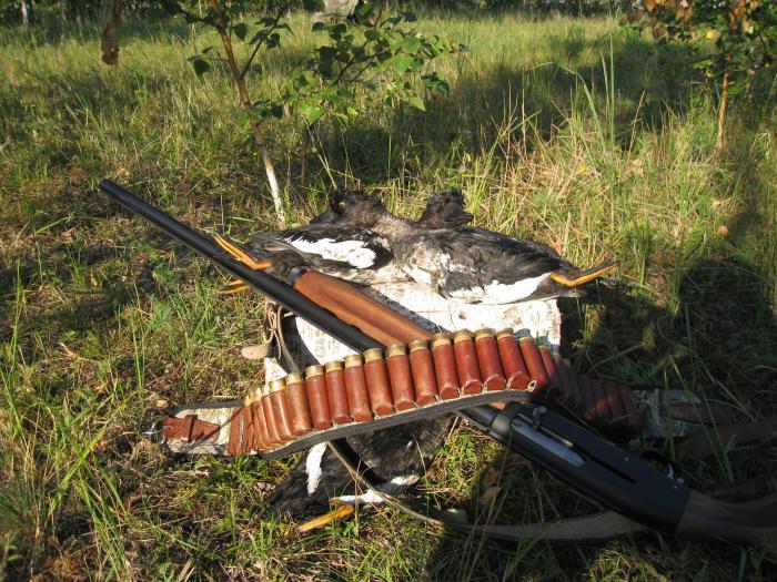 Осенняя охота 2010 год