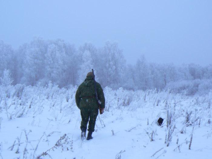 пошли,нет там медведя..))))