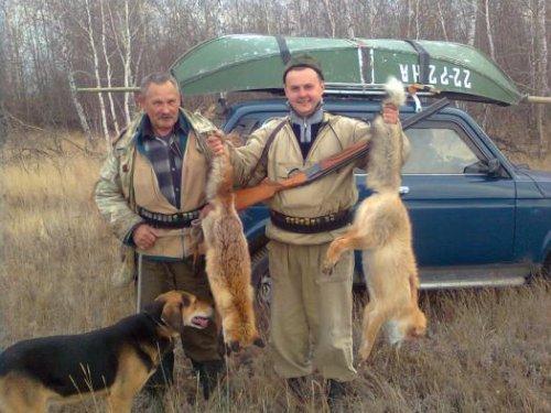 две осенних лисички !!!
