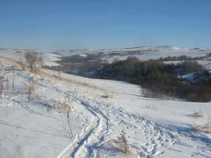 Согра где было село Ясное
