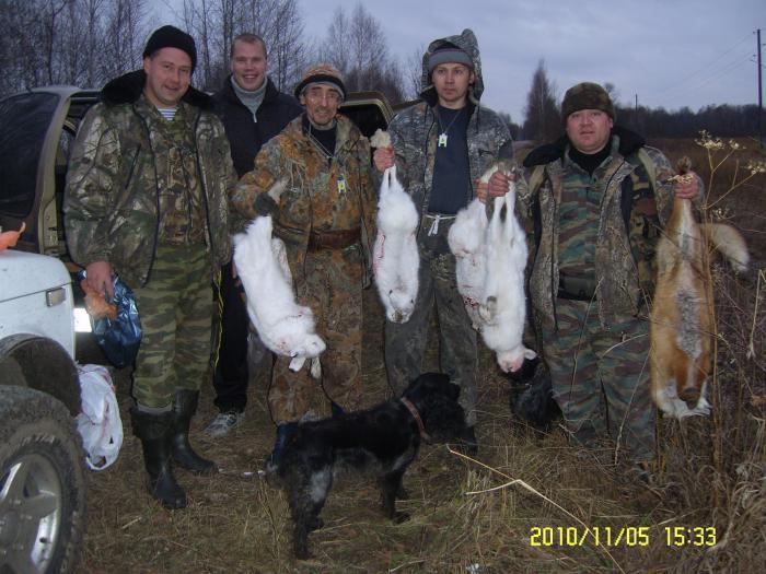 Результат коллективной охоты