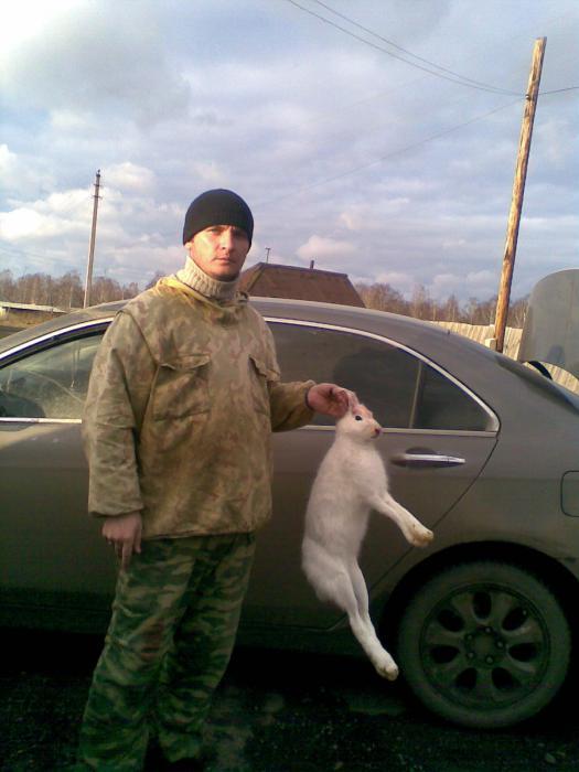 мой первый зайчонок!!