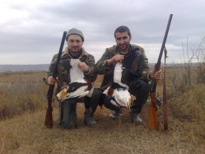 Duck Huntinq