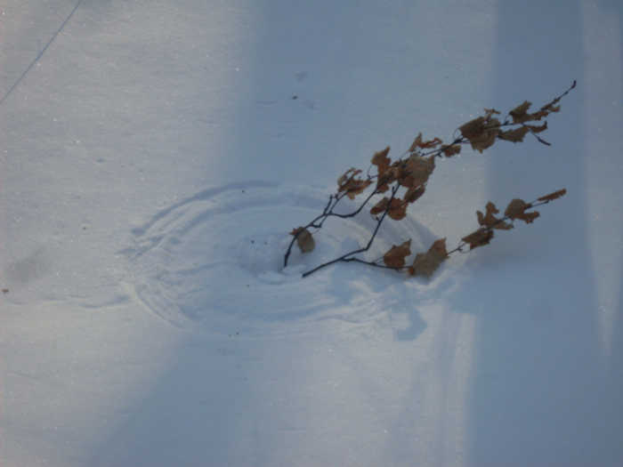 Леший рисует на снегу..