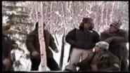 Коллективная охота на берлоге