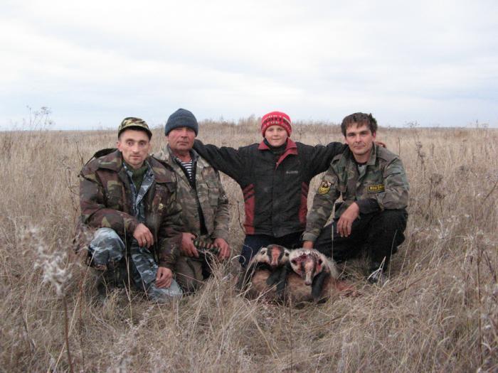 Результативная охота с норными.