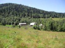 Домики в горах Алтая