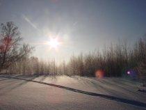 Тогучинский район. Морозное утро.