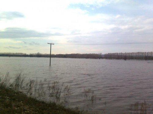 Затопленное поле
