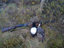 Закрытие весенней охоты 2011 года