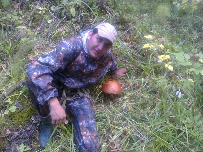 Хороший был гриб)