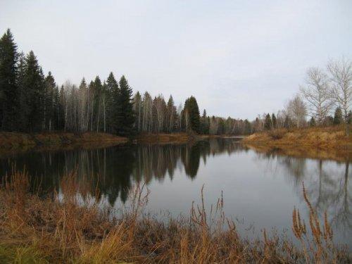 В краю лесных озер