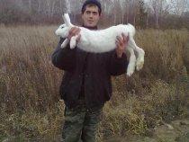 Сам на номер выбежал))))