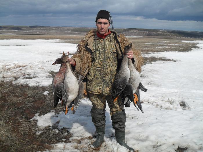 В разгар охоты на гусей 2011г