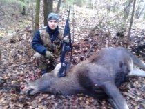Открытие охоты на лося 2011