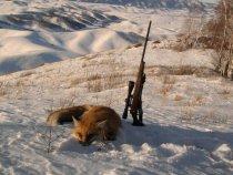 охотничьи красоты