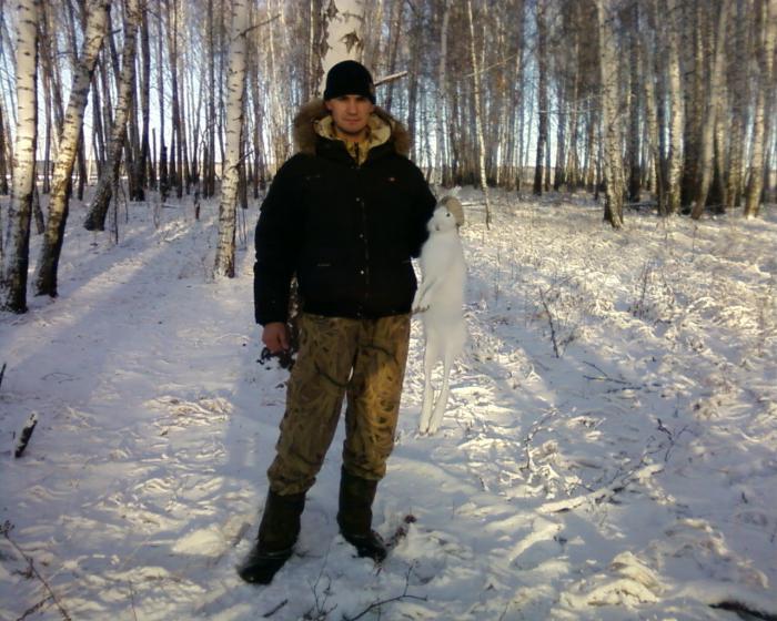 Зима 2010. Хитрый был заяц.