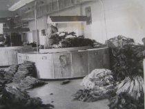 На Иркутской П-М.базе 01.1981г.Сотировка пушнины.