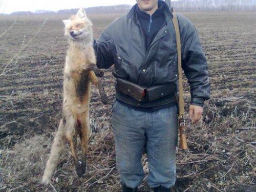 Открытие охоты на лису.Осень 2011.