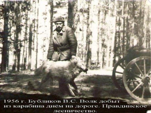 1956 год. Алтайский край, с.  Волчиха