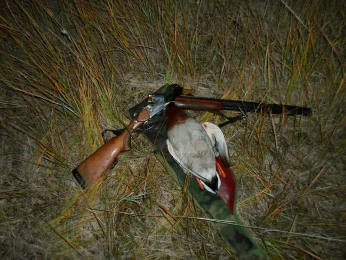 С вечерней охоты.