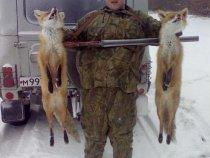 норная охота