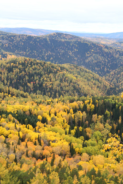 Золотая осень-красивое время