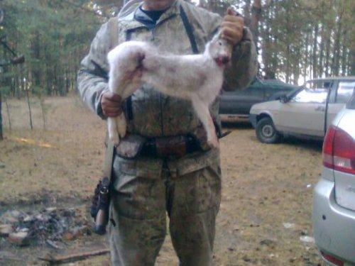 1.11.2012 открытие охоты