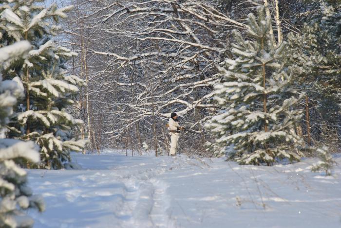 лес,мороз душа поёт.