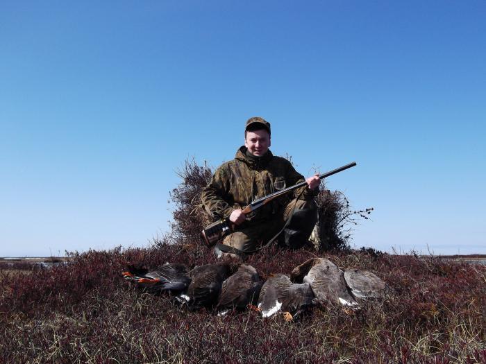Через несколько лет изучения гусиной охоты начали появляться результаты