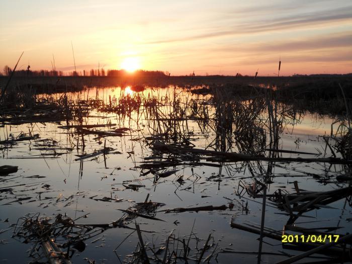 Восход.Весна 2011год