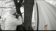 Specklebelly Goose Hunting Season 2012-2013 T&T Calls - Bulgaria