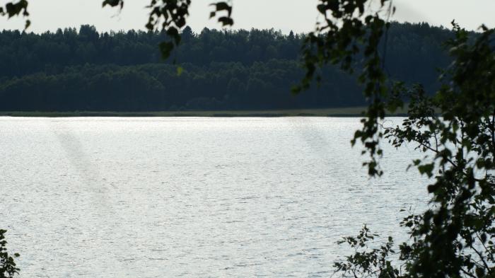 Волга-матушка река