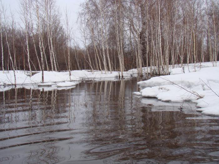 Кисельные реки, молочные берега.