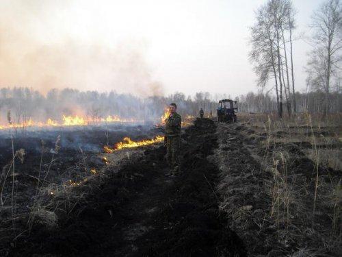 Тушение лесного пожара встречным палом от мин.полосы.