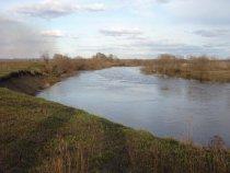 Многоводна ныньче река Тартас.....