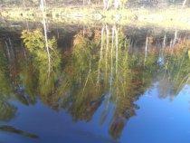 Зеркало Илима 1.