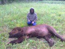 охота 2013