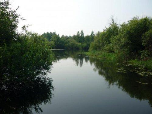 Пока ещё лето......на реке.....