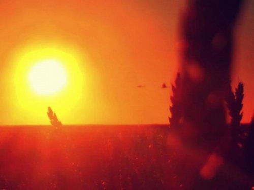 Август.Заход солнца.