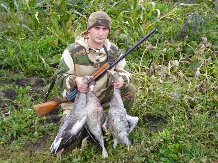 Итог гусиной охоты