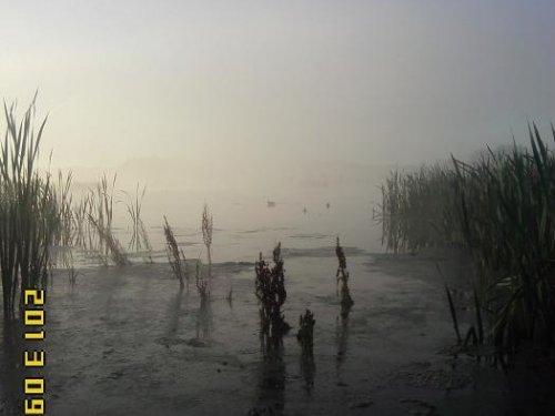 утро,зорька,туман и мороз
